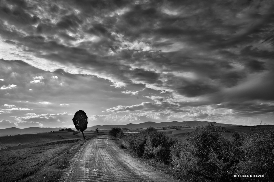 Tuscany's hills in B&W # 22