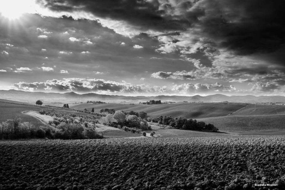 Tuscany's hills in B&W # 24