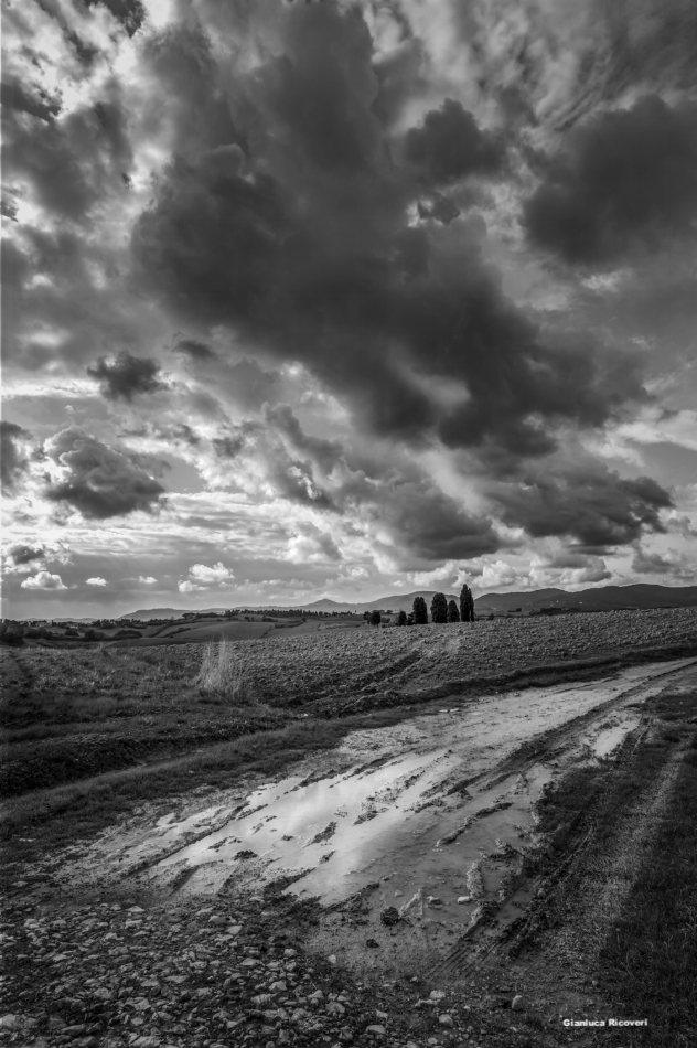 Tuscany's hills in B&W # 29