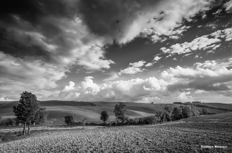 Tuscany's hills in B&W # 37