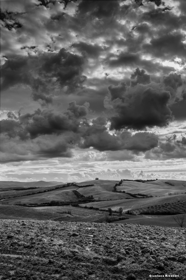 Tuscany's hills in B&W # 45