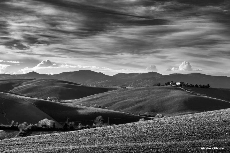 Tuscany's hills in B&W # 47