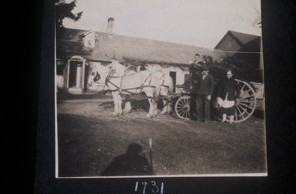 Family Posing with their Horse and Buggy
