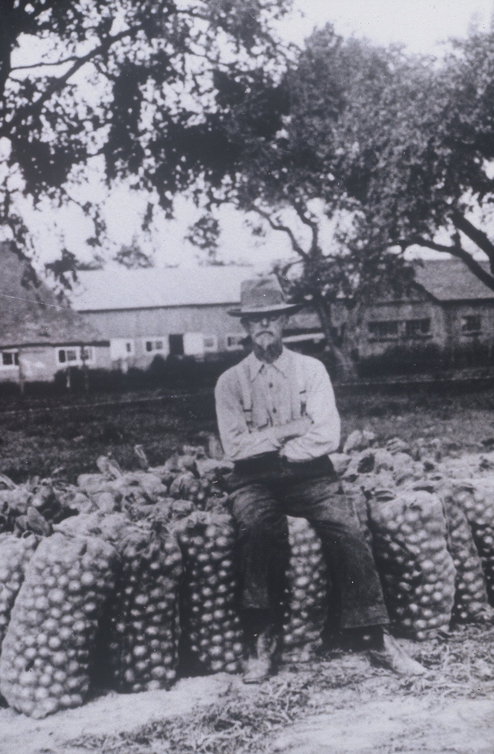 Mr Hepburn sitting on his onion harvest