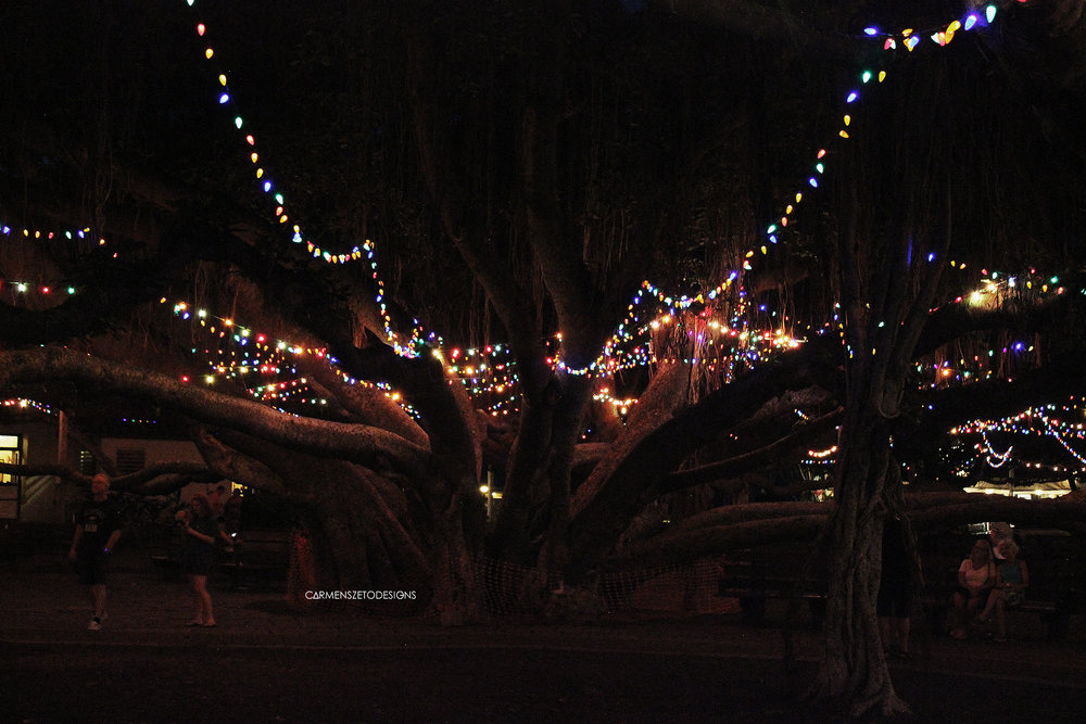 Large banyan tree decorated for the holiday season in the heart of Whaler's Village in Lahaina.