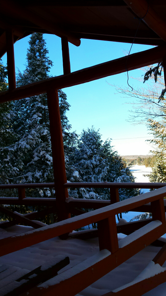 Kissau Kabine Winter View.png