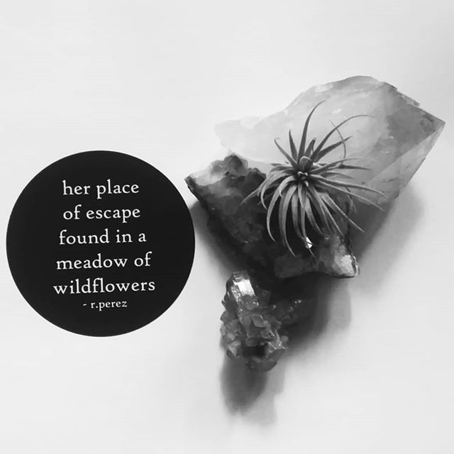 "• so much beauty  in a meadow  of wildflowers •  3"" × 3"" Sticker  of my ten-word story $3 • Just added to my shop. • ✒: #tenwordstory . 🎁: #poeticgoods"