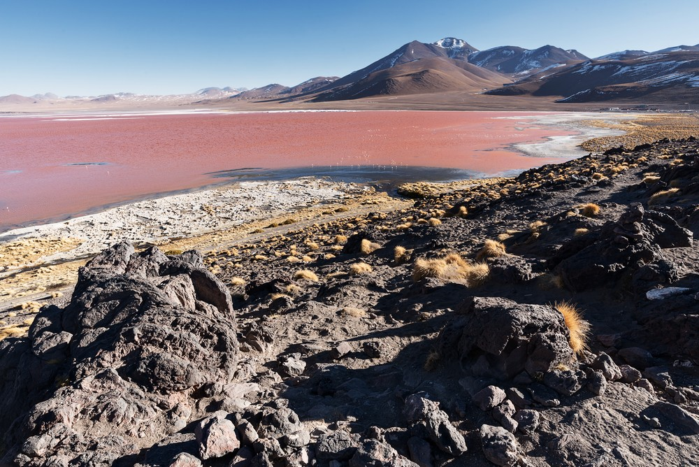 Laguna Colorada D02_0283_tn.jpg