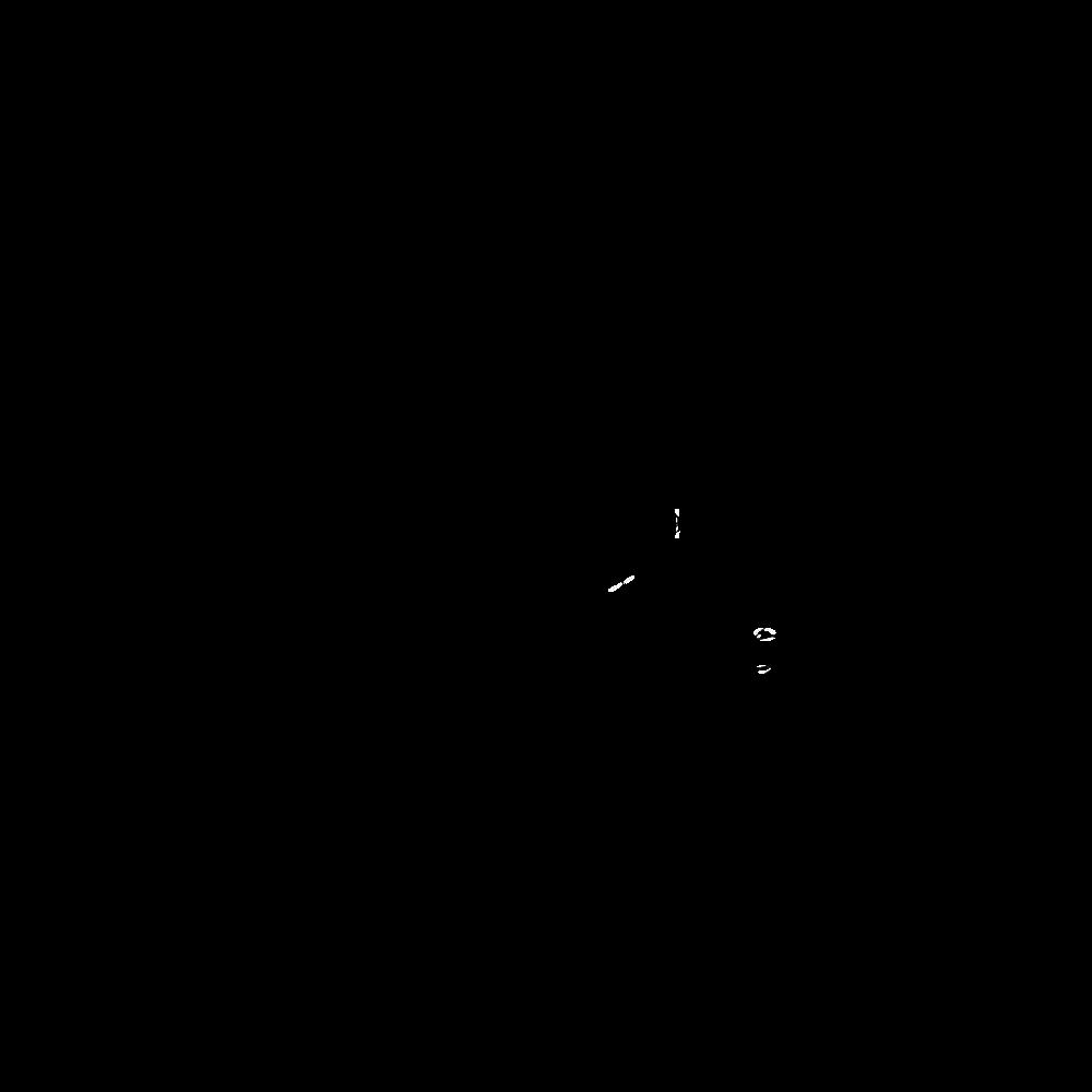 Panda Joy Orthographic-02.png
