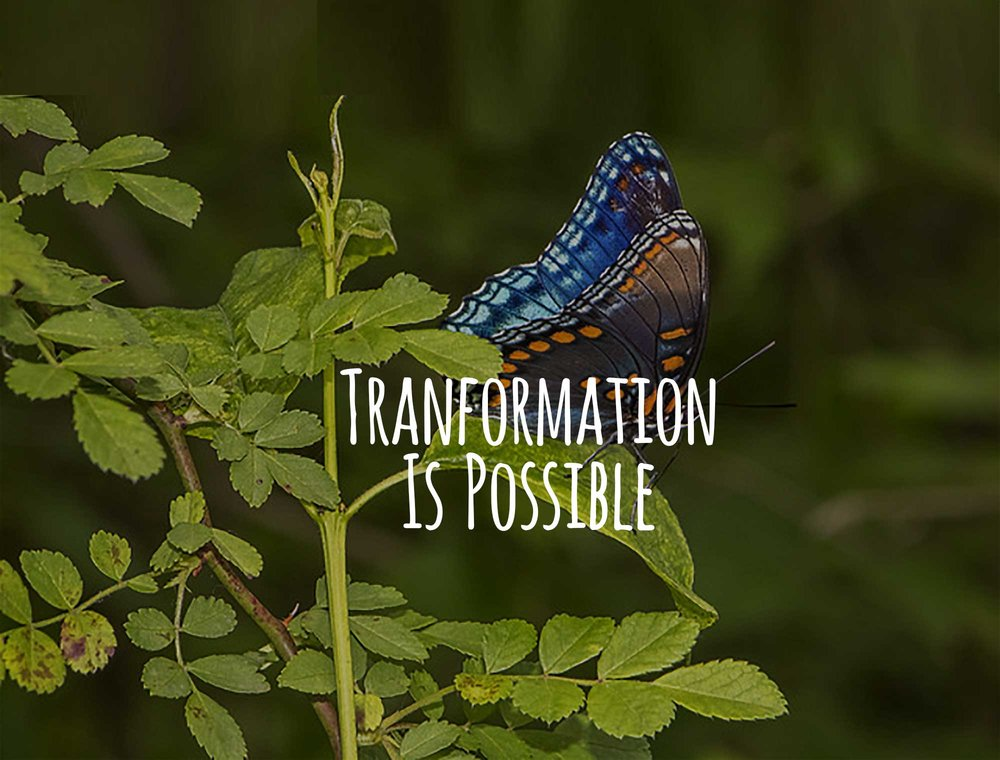 awc-slide-transformation2.jpg