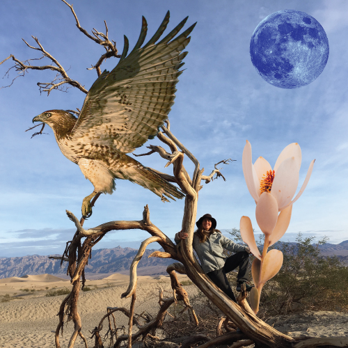 Death Valley - I love the desert, flowers,hiking,and the moon.