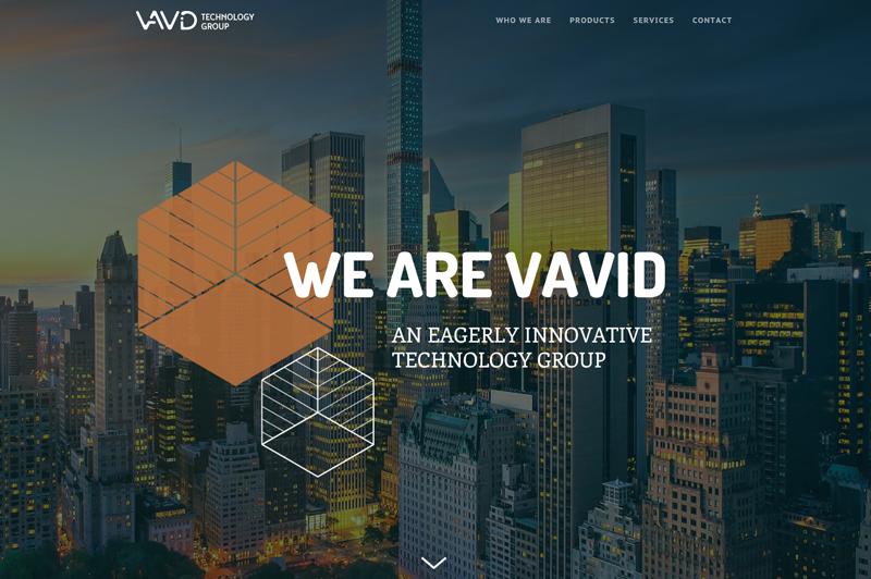 VAVID-website.jpg