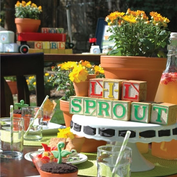 LIL' SPROUT BABY SHOWER