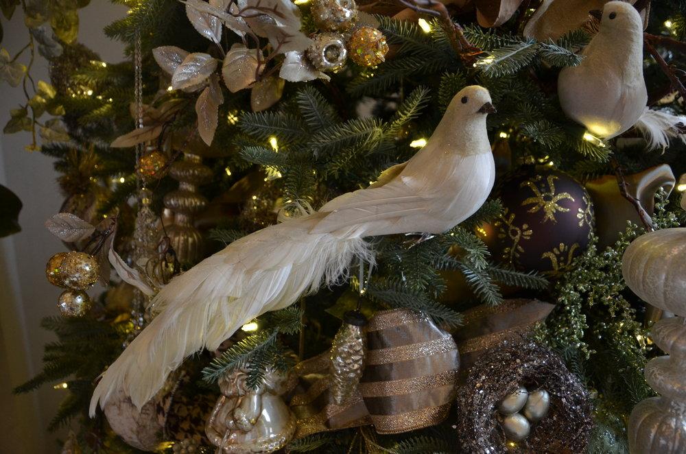Christmas tour 2015 Ogden Cres (70).JPG