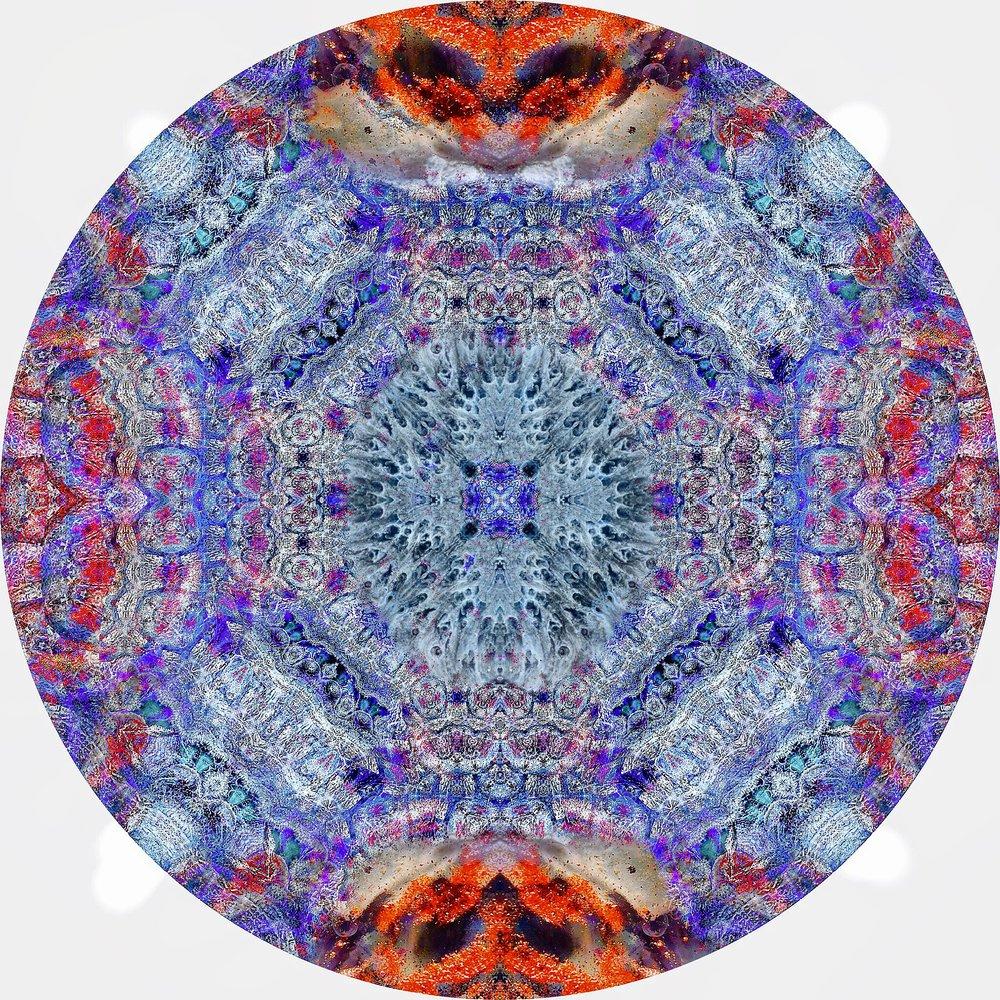 File Coral #A 16.JPG