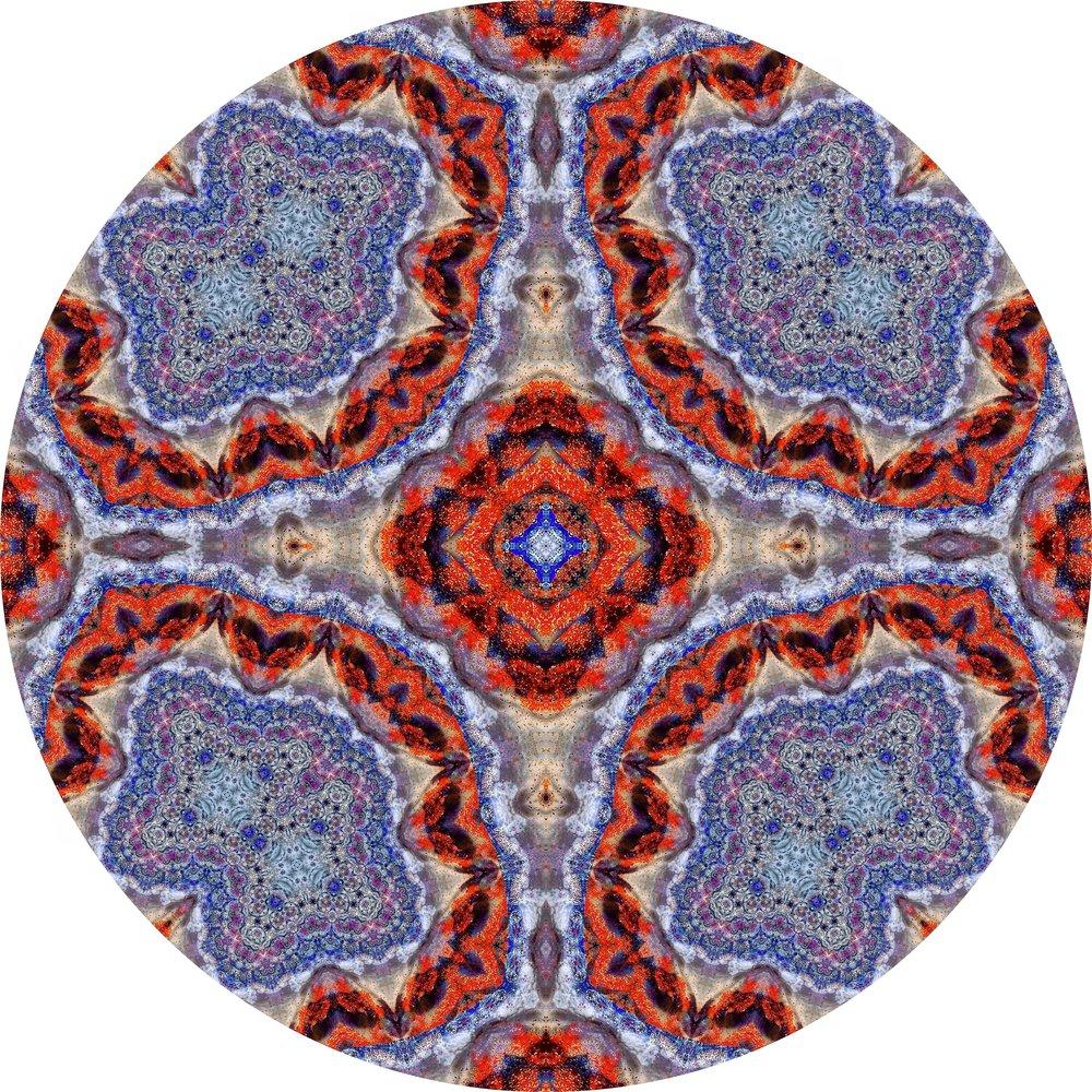 Fire Coral #A 20.JPG