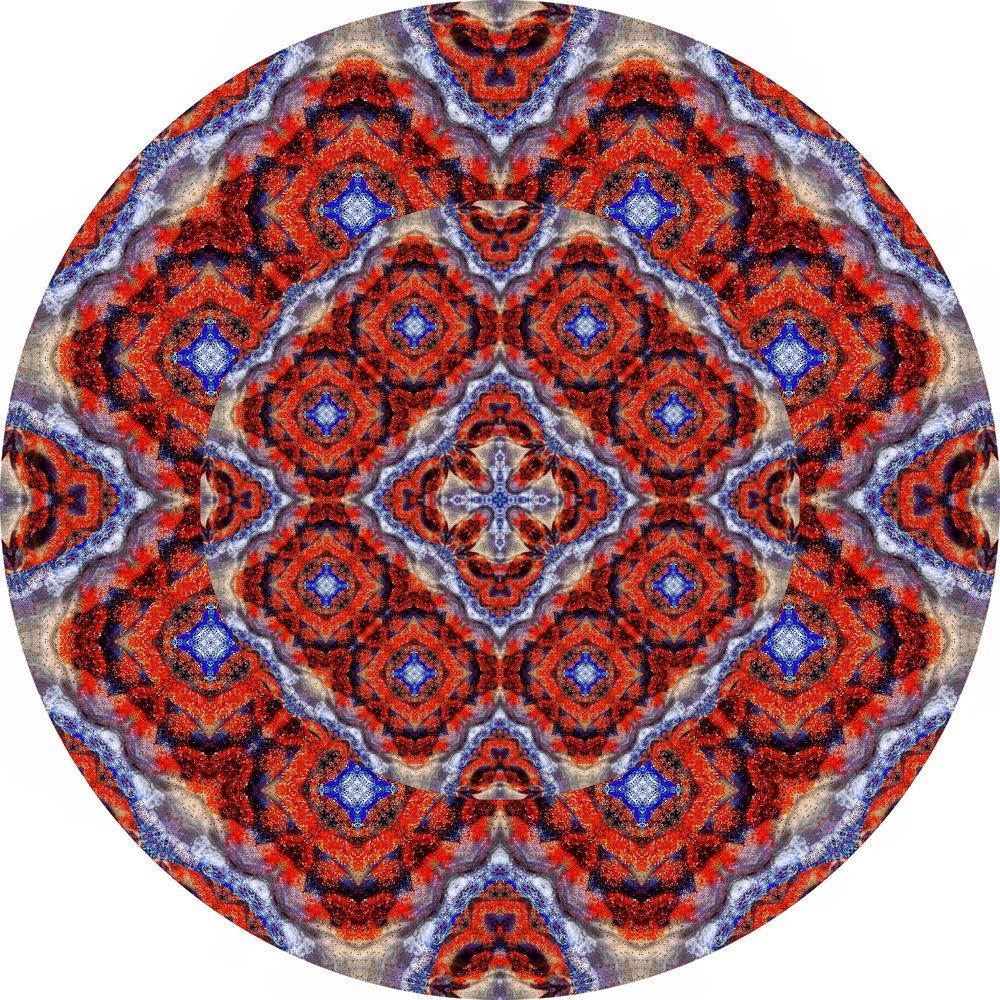 Fire Coral #A 24.JPG