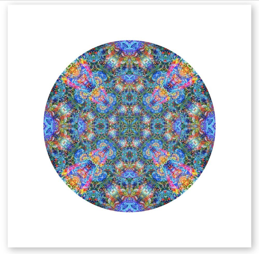 New Modern Mandala series inspired by parrotfish