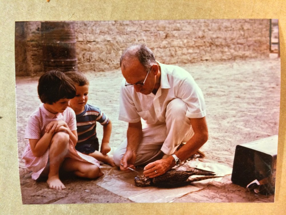 Dad treating a falcon while Nancy and Doug look on..jpg