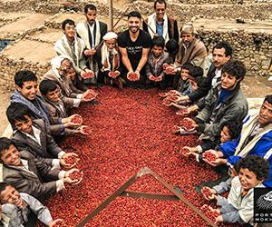 kerning-cultures-serious-jolt-coffee-yemen.jpg
