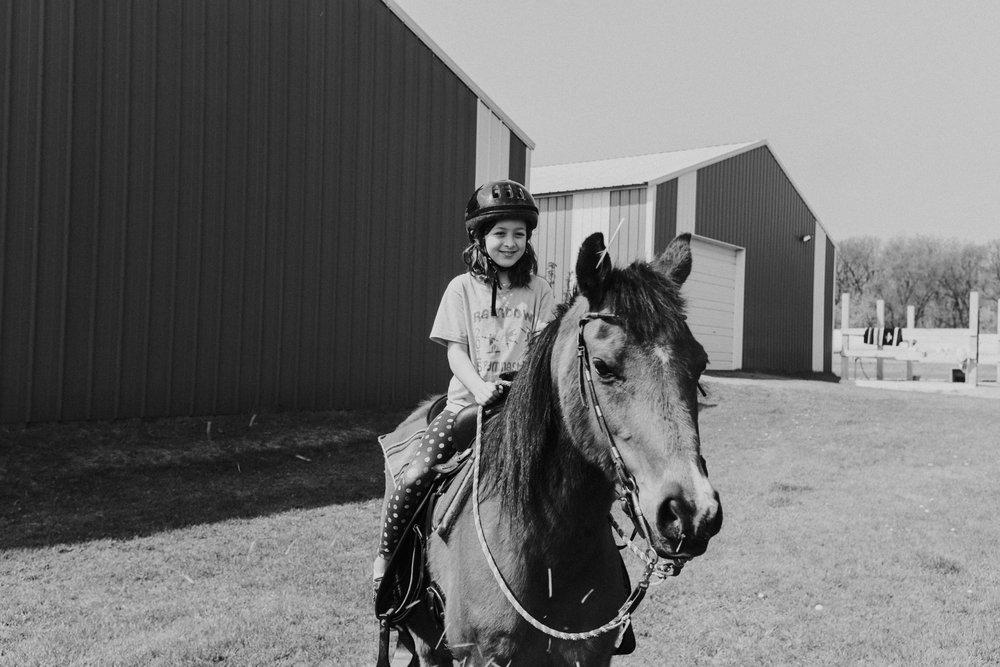 Central Wisconsin Horse Boarding Lutz Lane Boards