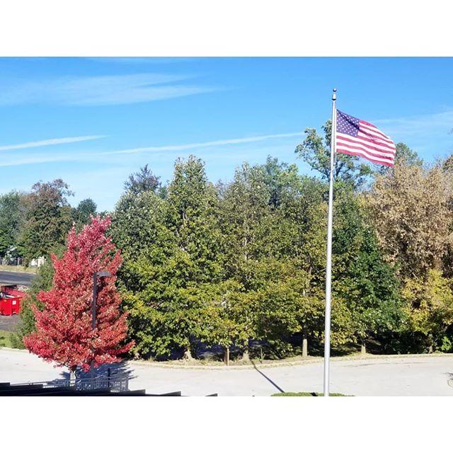 . 🍁🍃 秋  #onepiceveryday #tree #autumn #bloomington #viewfromworkstation #viewindifferentweather #colors