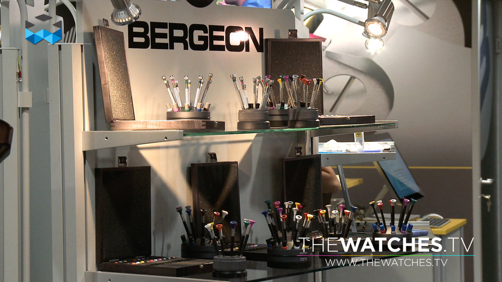 EPHJ-2016-BERGEON-03.jpg
