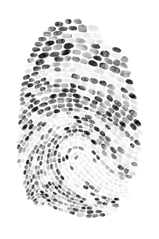 fingerprintwebsite2.jpg