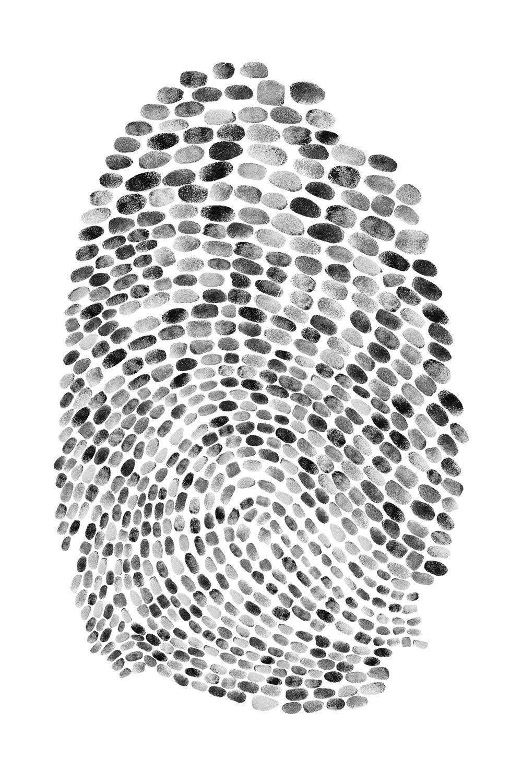 fingerprintwebsite.jpg
