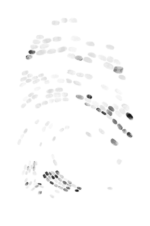 fingerprintwebsite4.jpg