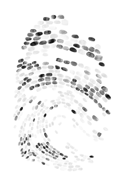 fingerprintwebsite3.jpg