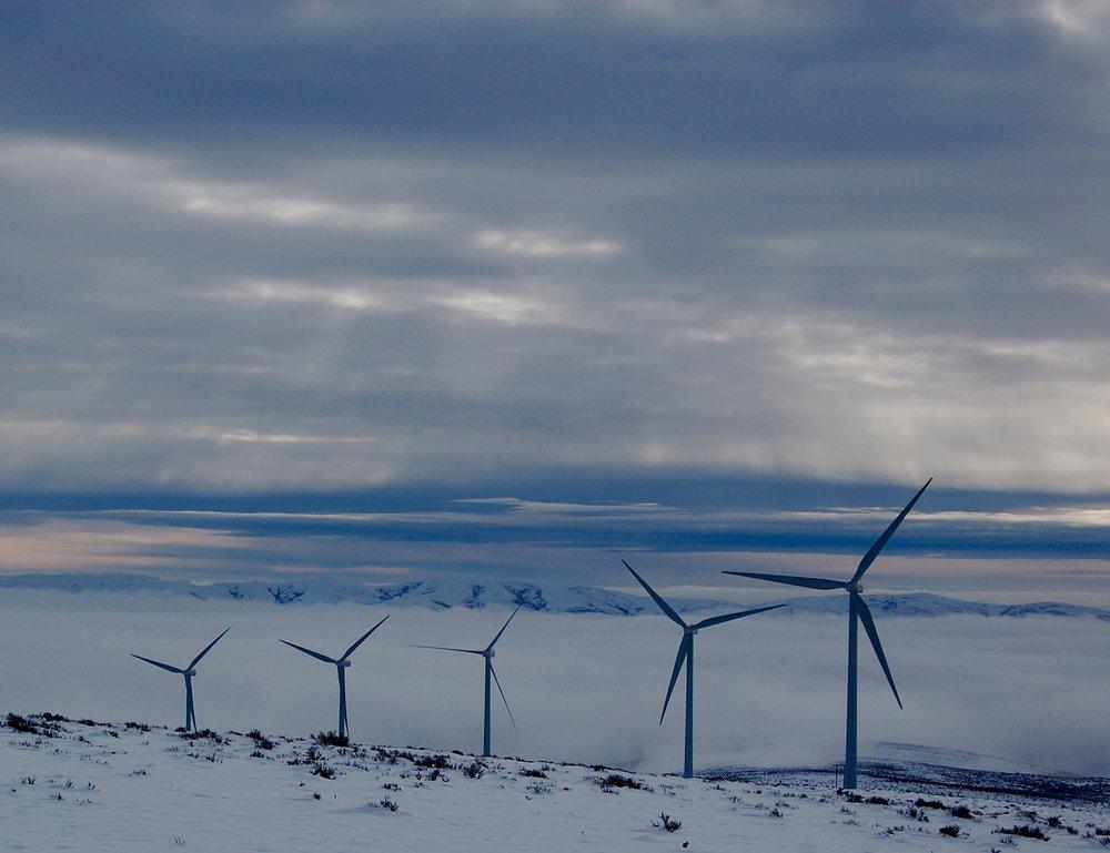 Wind Farm, Washington State