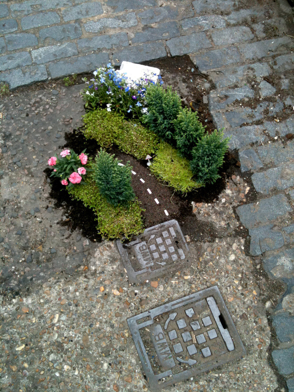 Pothole Garden confused.com steve wheen