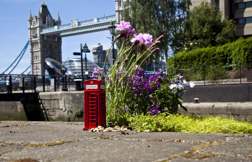 pothole garden tower bridge london phone box