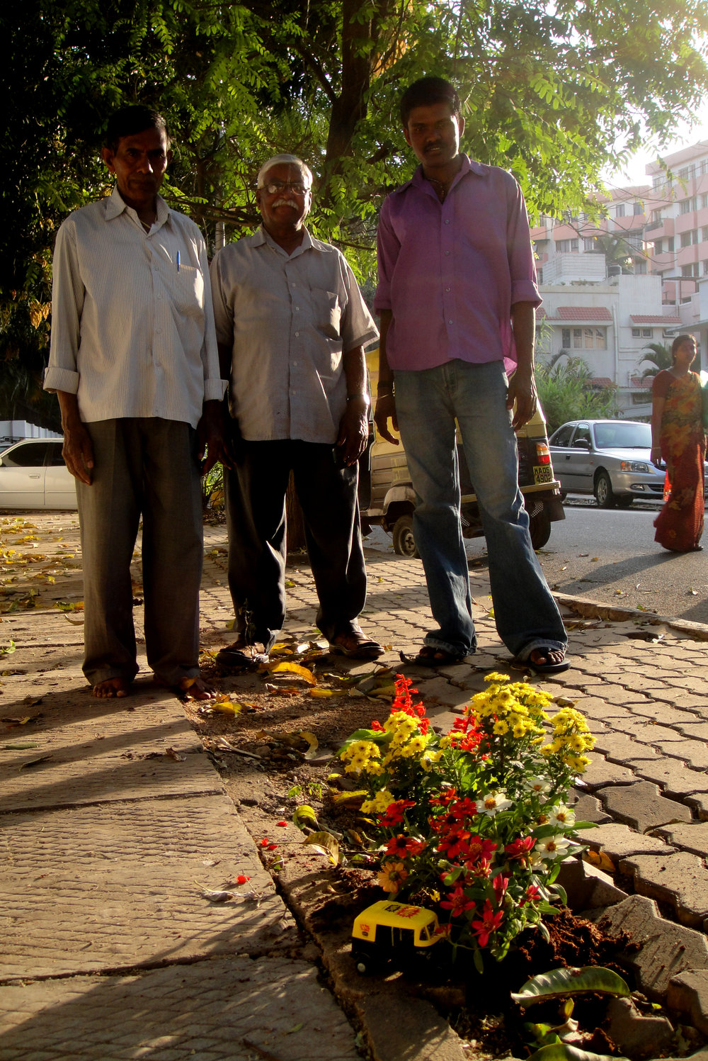 Gardening in India — The Pothole Gardener