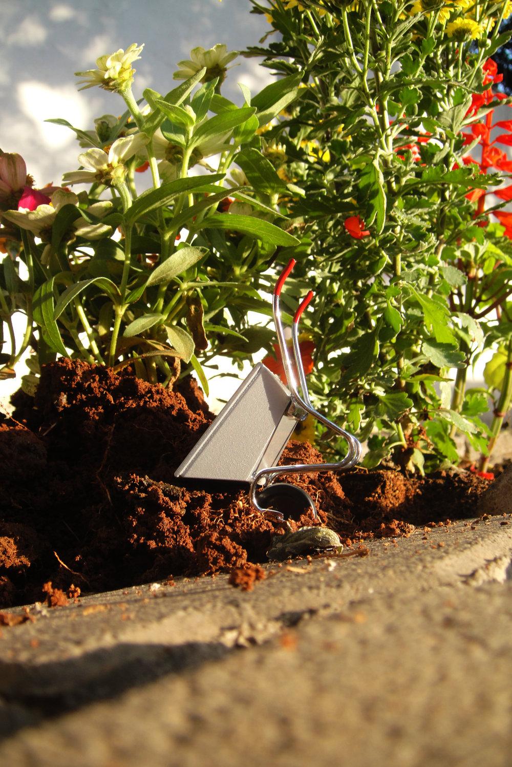 Pothole gardener steve wheen guerilla gardening India