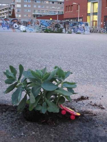 Pothole-5