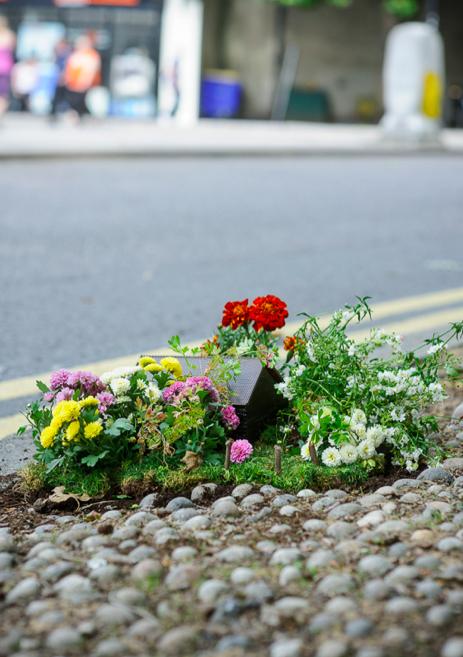 Pothole garden in Bristol street art 4