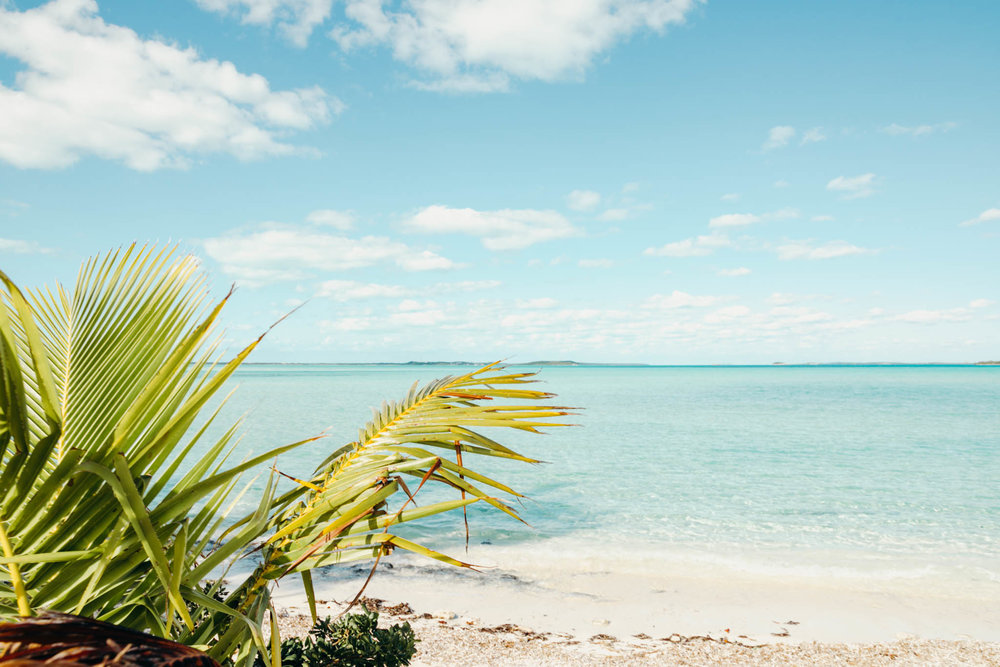 lars bahamas (7 of 39).jpg