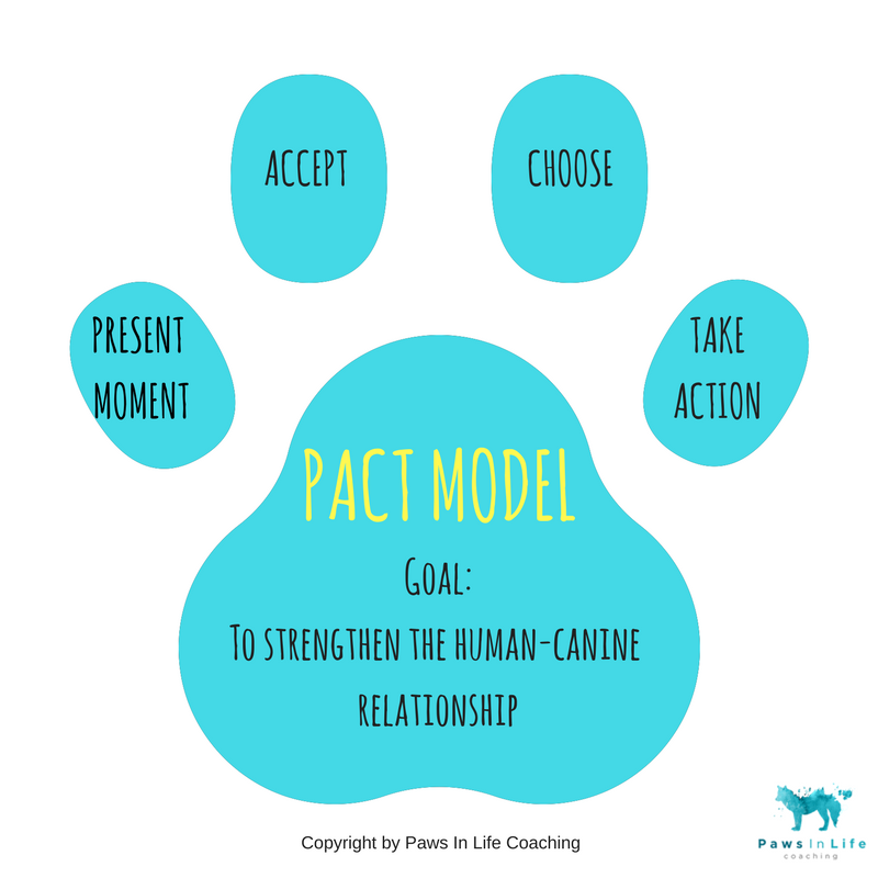 THE PACT MODEL by Birdy O'Sheedy