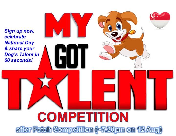 1. Got Talent poster2.jpg