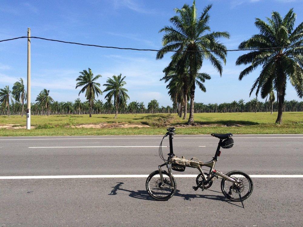Baking under the tropical sun while riding to Tanjong Sepat from Bagan Lalang.