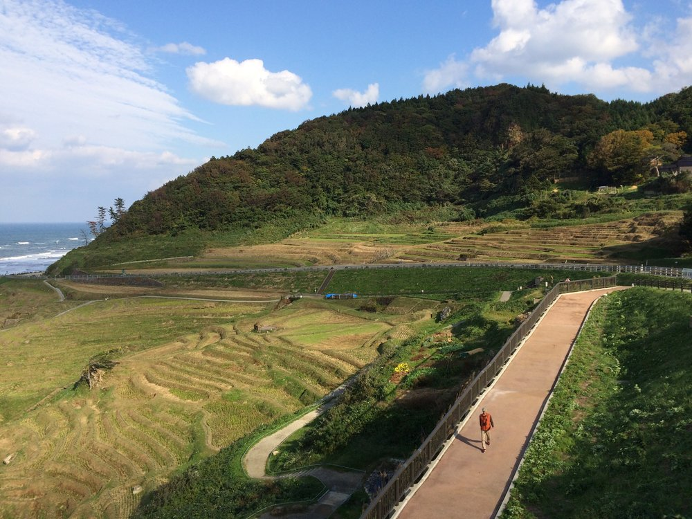 The beautifully sculpted rice terraces of Shiroyone Senmaida.