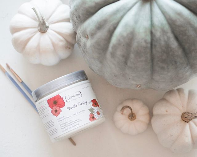 Fall is here and it's pumpkin season! I finally got my hands on a blue pumpkin (but bummed they don't come in mini sizes) and I'm super excited to paint it using my leftover @countrychicpaint in Vanilla Frosting! Going to go modern boho and paint patterns on it ✌🏼what do you do to decorate your pumpkins besides carve them?