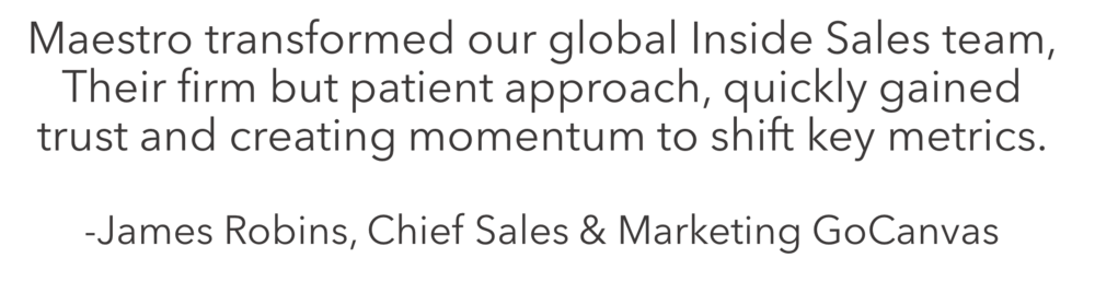 Maestro transformed our global Inside Sales team. Their firm but patient approach, quickly gained trust and creating momentum to shift key metrics.