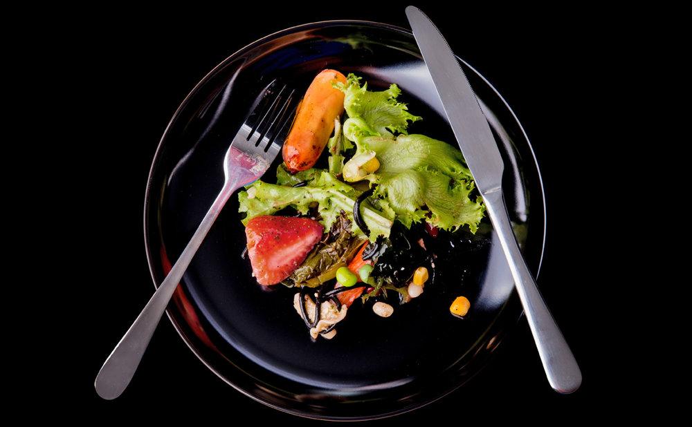 La loi Grenelle II rend obligatoire le recyclage de déchets alimentaires pour un nombre croissant de producteurs de ces déchets, entre autres dans le secteur de la restauration.  En savoir plus...