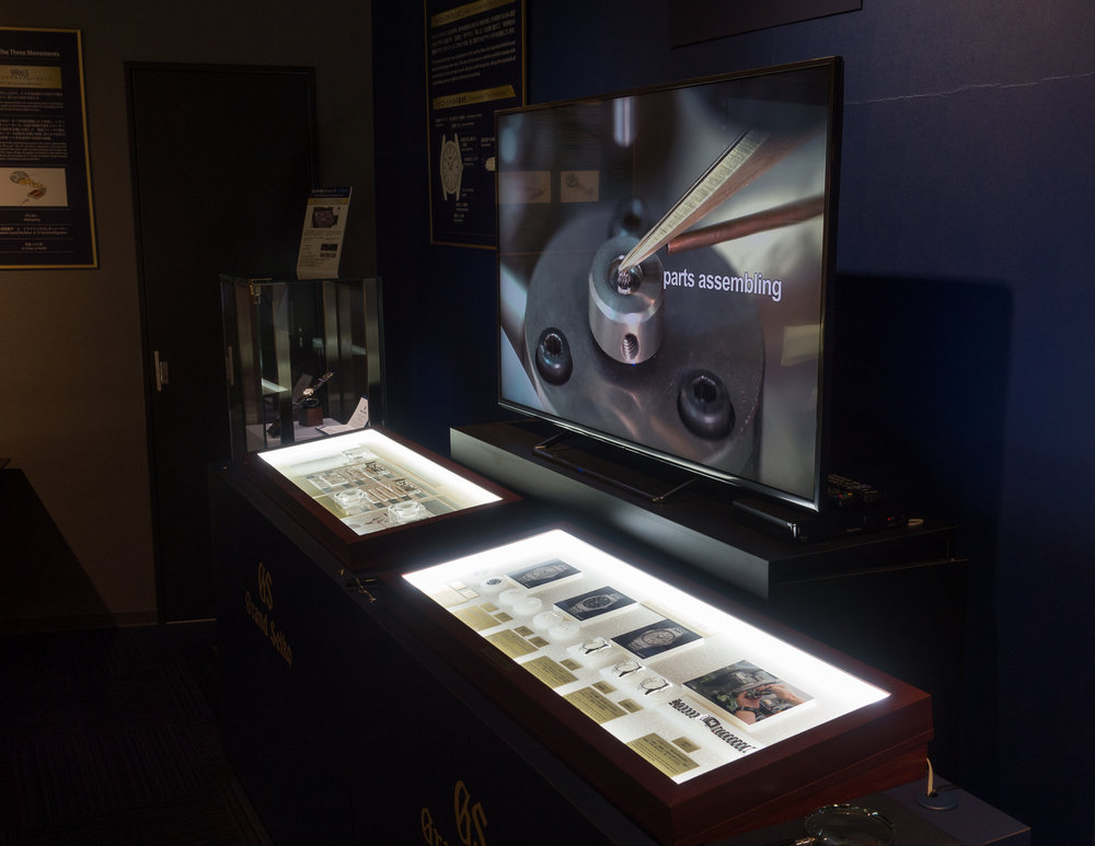GS Video Display