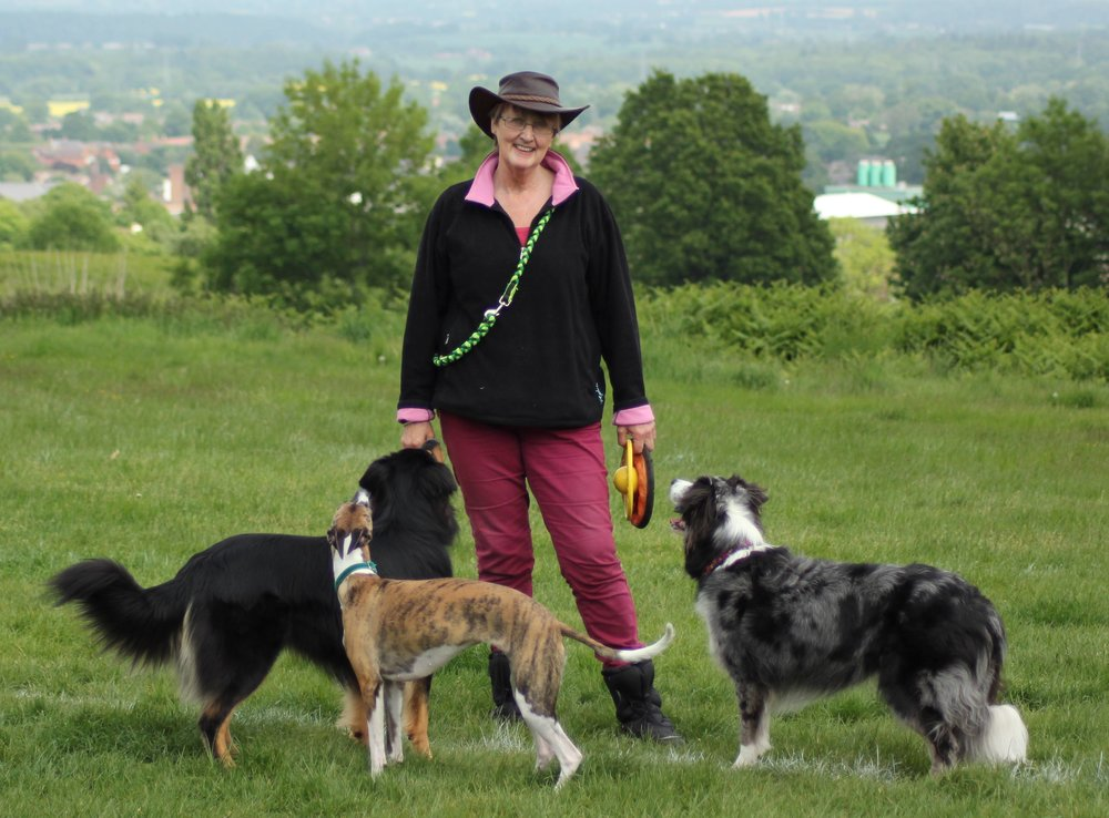 Beverley and some of her dogs