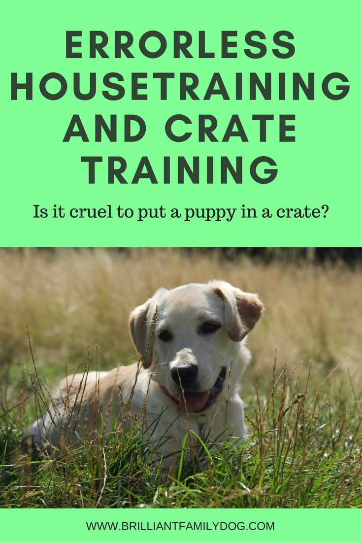 New puppy, puppy training, puppy potty training | Housetraining and crate training | FREE GUIDE | #newpuppy, #puppytraining | www.brilliantfamilydog.com