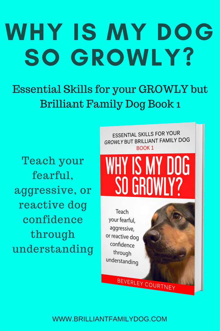 Essential Skills for your GROWLY but Brilliant Family Dog - Book 1